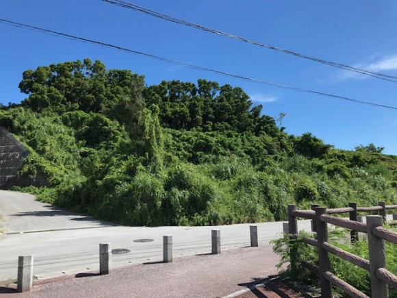 宇茂佐の森137.16坪