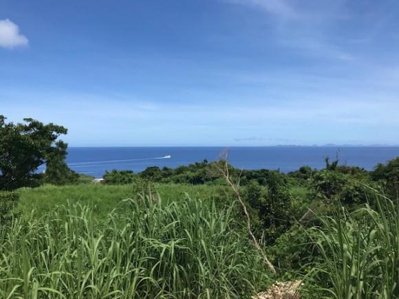古宇利島546.01坪